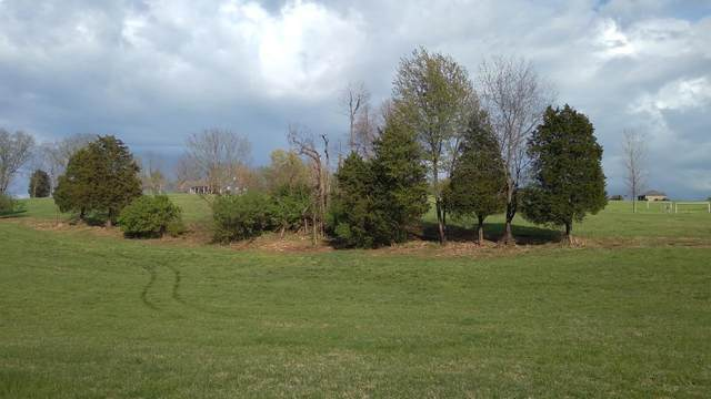 1675 Herrington Hills Drive, Lancaster, KY 40444 (MLS #20106379) :: Nick Ratliff Realty Team