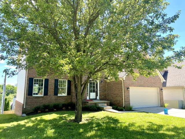 436 Whitfield Drive, Lexington, KY 40515 (MLS #20111892) :: Nick Ratliff Realty Team