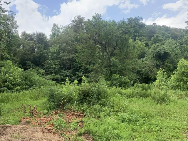 999 Elsome Creek Road, Jackson, KY 41339 (MLS #20113034) :: Nick Ratliff Realty Team