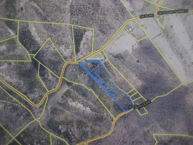 1234 Arrowhead Lake Road, Cynthiana, KY 41031 (MLS #20119822) :: Nick Ratliff Realty Team