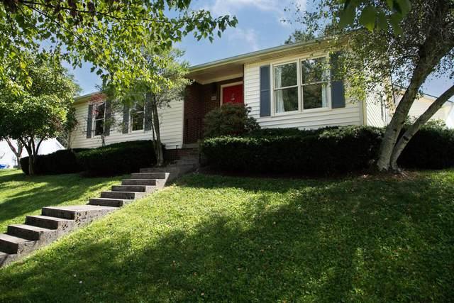 888 Cypress Point Way, Lexington, KY 40509 (MLS #20120204) :: Better Homes and Garden Cypress