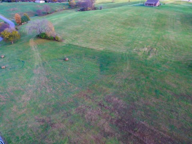 335 Herrington Hills Dr, Lancaster, KY 40444 (MLS #1722373) :: Nick Ratliff Realty Team