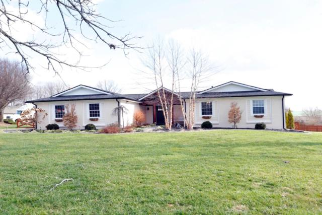 101 Lone Oak Drive, Nicholasville, KY 40356 (MLS #1900482) :: Sarahsold Inc.