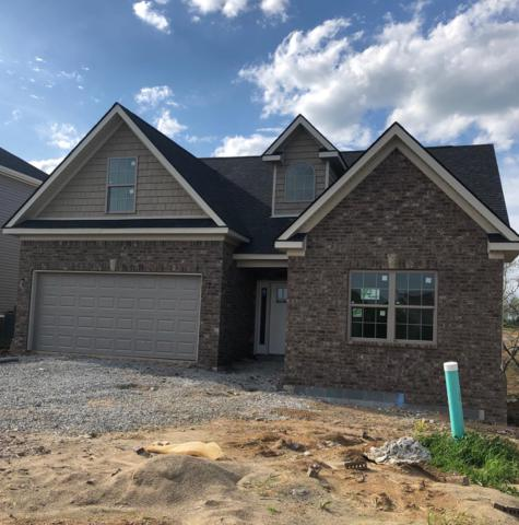 533 Ryan Drive, Richmond, KY 40475 (MLS #1903847) :: The Lane Team