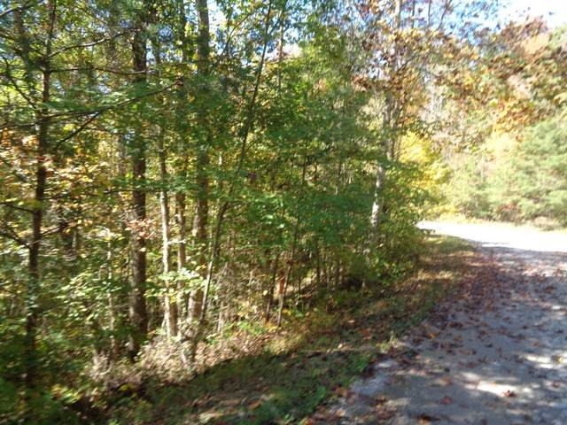 700 Wood View Drive, East Bernstadt, KY 40729 (MLS #20001116) :: Nick Ratliff Realty Team