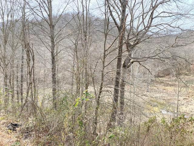 9999 Stinking Creek Bell Fork, Flat Lick, KY 40935 (MLS #20002824) :: Nick Ratliff Realty Team