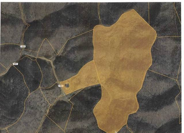6775 Hammons Fork Road, Barbourville, KY 40906 (MLS #20023812) :: Nick Ratliff Realty Team