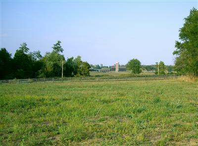 121 Chrisman Oaks Trail, Nicholasville, KY 40356 (MLS #1014407) :: Nick Ratliff Realty Team