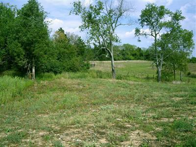 469 Chrisman Oaks Trail, Nicholasville, KY 40356 (MLS #1112146) :: Robin Jones Group