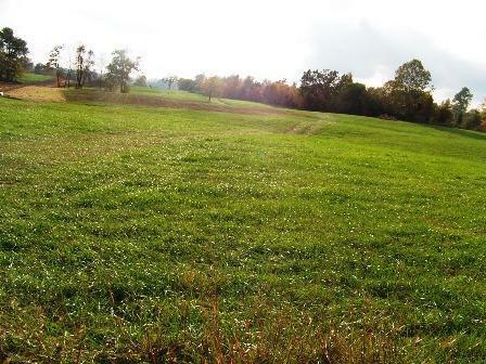 380 Horseshoe Bend Road, Richmond, KY 40475 (MLS #1119507) :: Nick Ratliff Realty Team