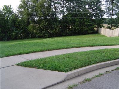 317 Weslyn Way, Nicholasville, KY 40356 (MLS #1406742) :: Nick Ratliff Realty Team