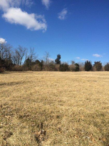 44 Rolling Meadows, Lancaster, KY 40444 (MLS #1602681) :: Nick Ratliff Realty Team