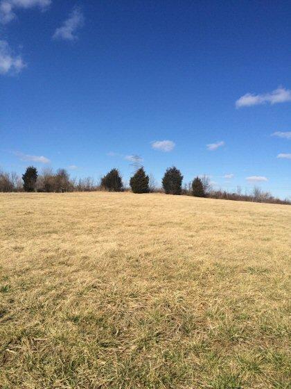 42 Rolling Meadows, Lancaster, KY 40444 (MLS #1602683) :: Nick Ratliff Realty Team