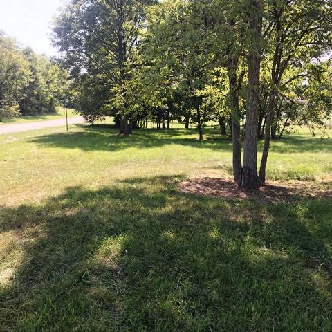 119 Elk Drive, Stamping Ground, KY 40379 (MLS #1619629) :: The Lane Team