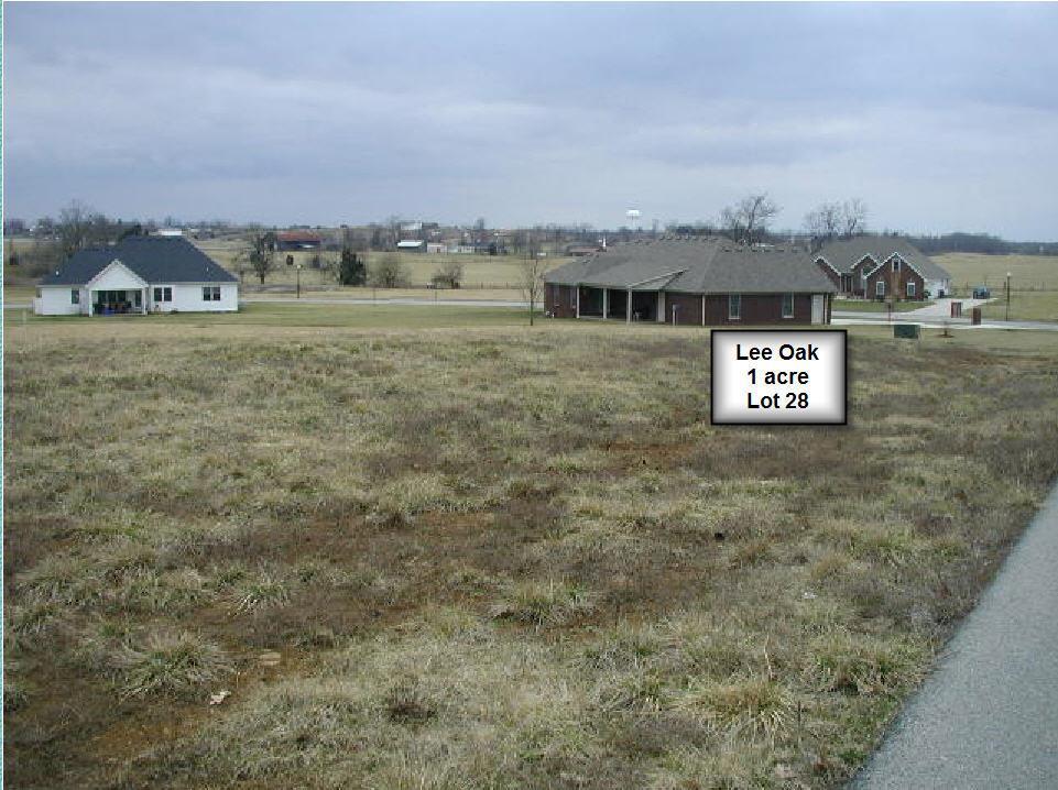 116 Lee Oaks Est - Photo 1