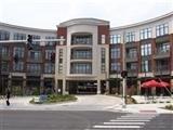 535 S Upper, Lexington, KY 40508 (MLS #1711752) :: Nick Ratliff Realty Team