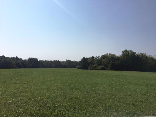 2 Logan Lane, Nicholasville, KY 40356 (MLS #1721404) :: Nick Ratliff Realty Team