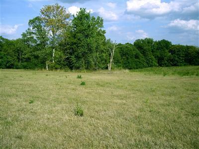 480 Chrisman Oaks Trail, Nicholasville, KY 40356 (MLS #1800244) :: Gentry-Jackson & Associates