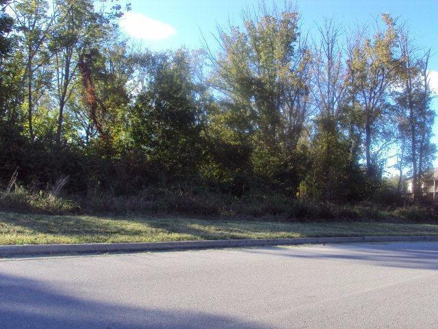 802 Ridgewood Drive, Berea, KY 40403 (MLS #1802364) :: Nick Ratliff Realty Team
