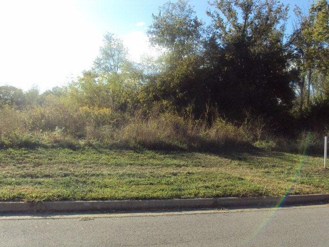 806 Ridgewood Drive, Berea, KY 40403 (MLS #1802372) :: Nick Ratliff Realty Team