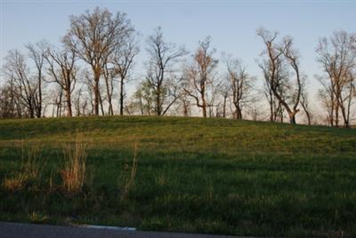 230 Meadow Lake Drive, Lancaster, KY 40444 (MLS #1804073) :: Nick Ratliff Realty Team