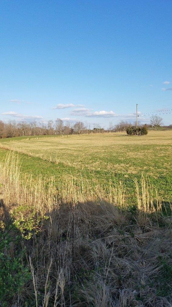 19 Coleman Road, Somerset, KY 42503 (MLS #1806885) :: Nick Ratliff Realty Team