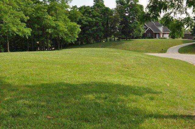 137 Winding View Trail, Georgetown, KY 40342 (MLS #1807054) :: Nick Ratliff Realty Team