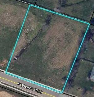 124 Foaling Ridge, Nicholasville, KY 40356 (MLS #1822865) :: Sarahsold Inc.
