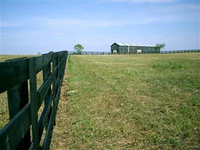 401 Chrisman Oaks Trail, Nicholasville, KY 40356 (MLS #1910329) :: The Lane Team