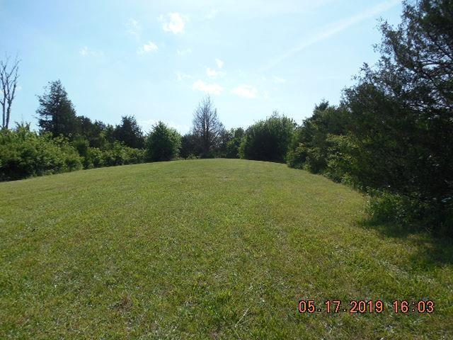 1 Newby Lane, Harrodsburg, KY 40330 (MLS #1911088) :: Nick Ratliff Realty Team