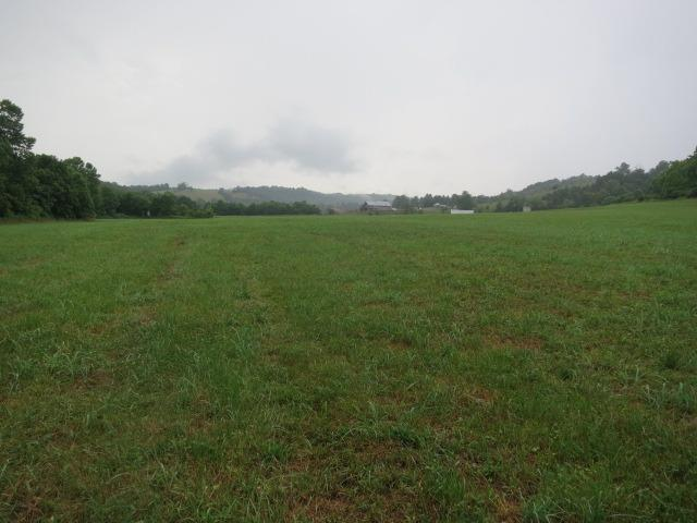 2710 White Conkwright Road, Winchester, KY 40391 (MLS #1916246) :: Nick Ratliff Realty Team