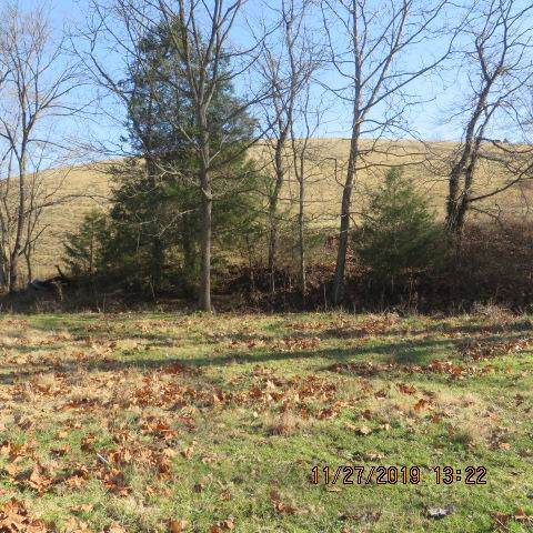 15 Old Mexico Road Acre Lot, Ewing, KY 41039 (MLS #1927481) :: Nick Ratliff Realty Team