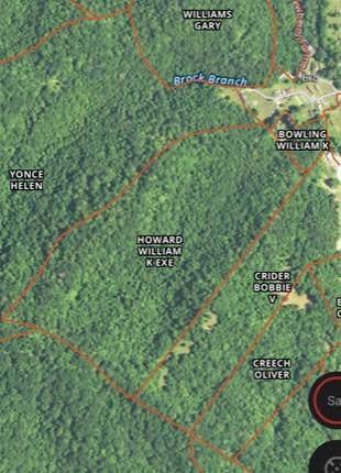 1 Camp Branch Road, Wallins, KY 40873 (MLS #1927749) :: Nick Ratliff Realty Team