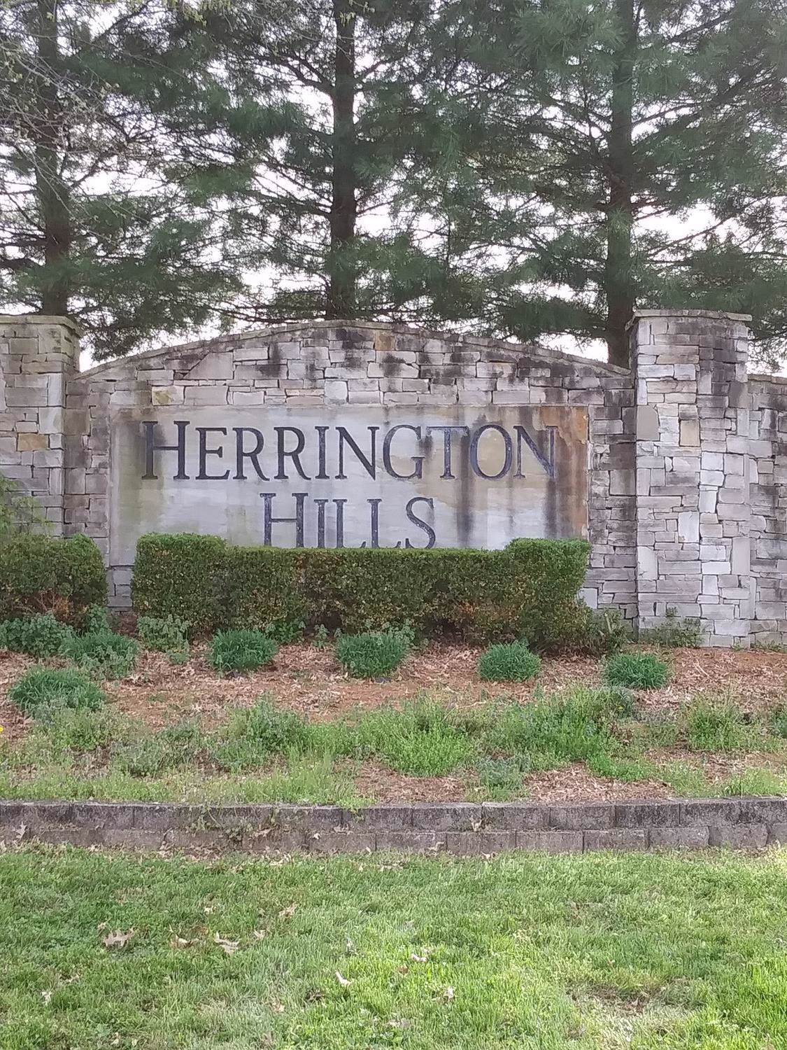 0 Herrington Hills Drive - Photo 1
