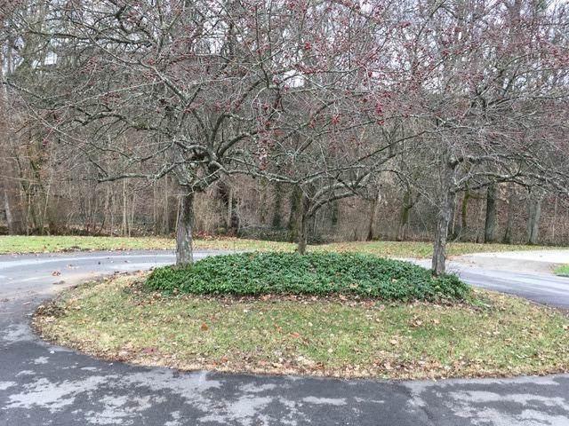 106 Brookside Court, Frankfort, KY 40601 (MLS #1928674) :: Shelley Paterson Homes | Keller Williams Bluegrass