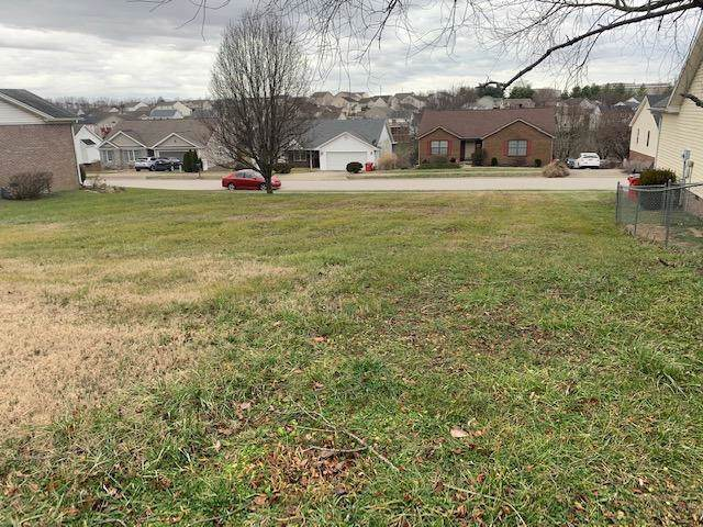 135 Mallard Drive, Frankfort, KY 40601 (MLS #20000735) :: Shelley Paterson Homes | Keller Williams Bluegrass