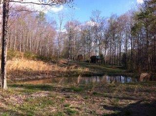 396 Happy Hollow Rd, Hustonville, KY 40437 (MLS #20001351) :: Nick Ratliff Realty Team