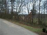 123 Beechwood Drive - Photo 1