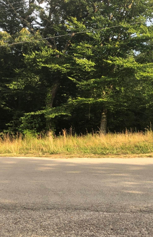123 Lot 2 & 3 Oakwood Estate - Photo 1