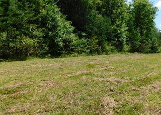 200 Jarve Hollow, Manchester, KY 40962 (MLS #20016613) :: Robin Jones Group