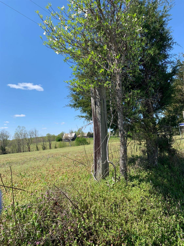 4225 Hickory Nut Road - Photo 1