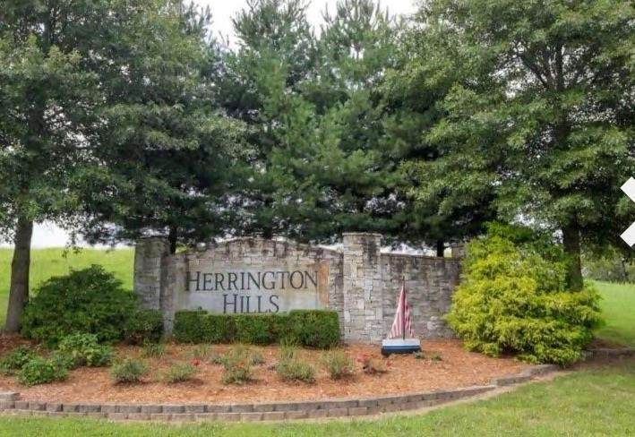 1807 Herrington Hills Dr - Photo 1