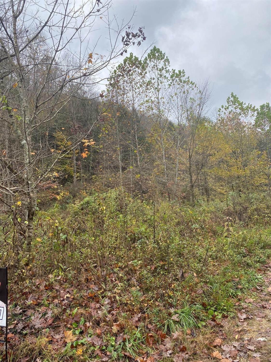 9999 Buffalo Creek Bullskin Rd - Photo 1