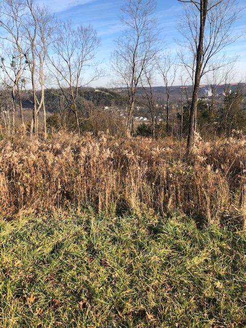 252 Crown Point, Frankfort, KY 40601 (MLS #20025345) :: The Lane Team