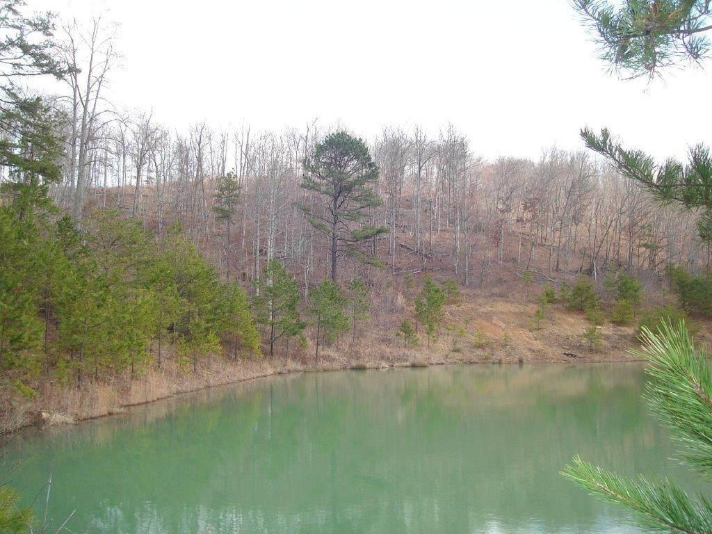 1 Rockhouse Fork Rd - Photo 1