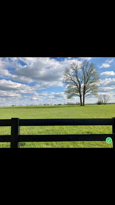 593 Concord Road - Photo 1