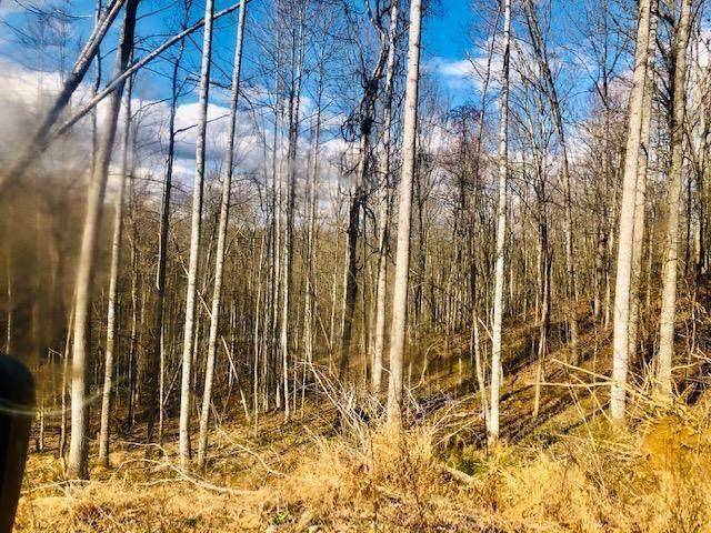 9999 Wildcat Trail - Photo 1