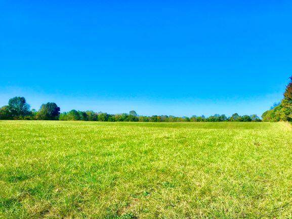 211 Peachtree Lane, Brodhead, KY 40409 (MLS #20111250) :: Better Homes and Garden Cypress