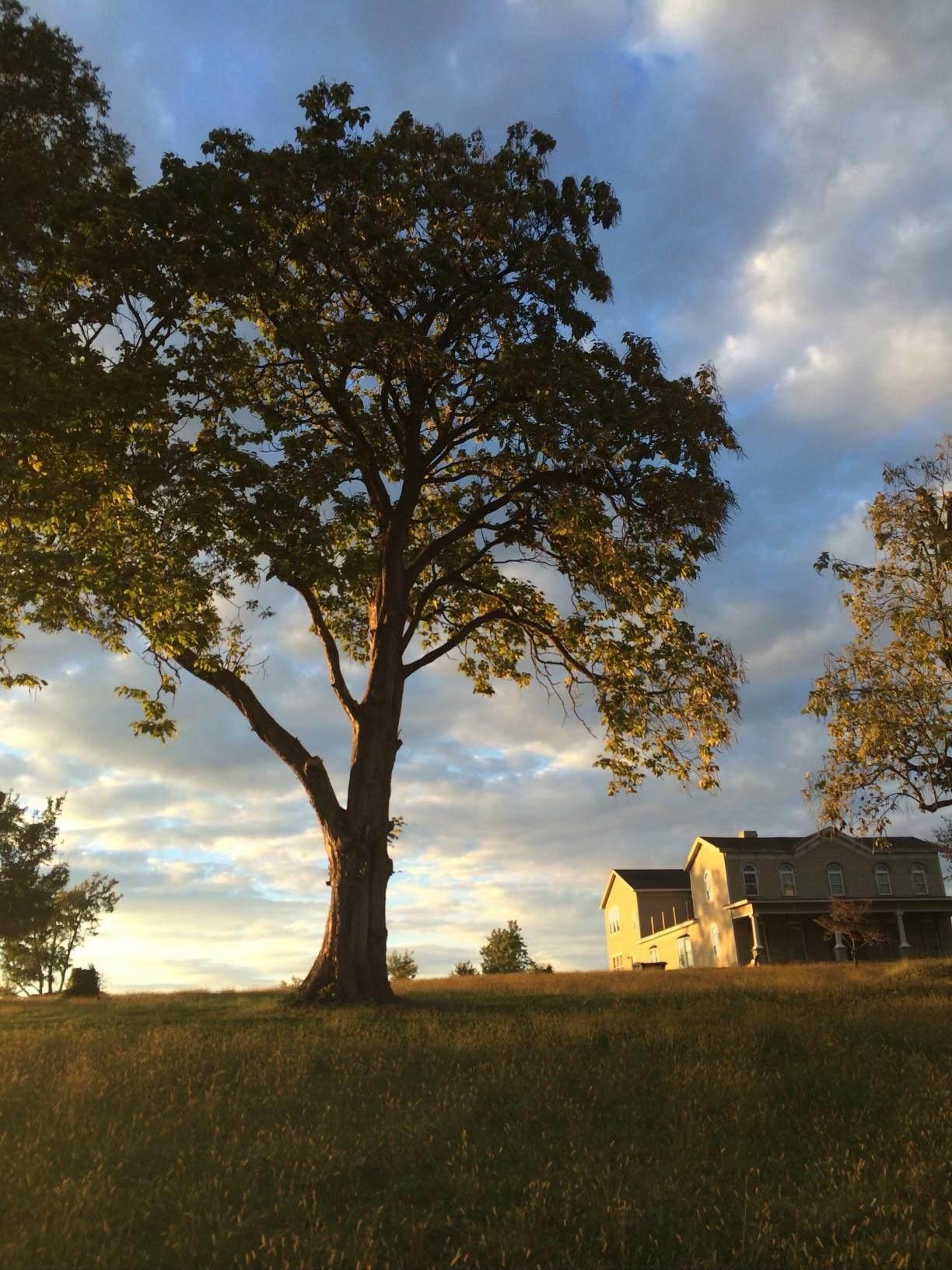 985 Millersburg Road - Photo 1