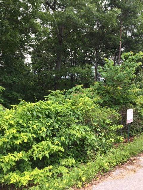 9 Pineview Heights Road - Photo 1